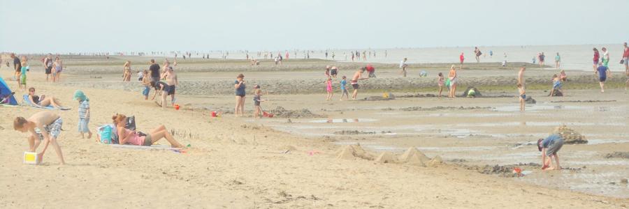 strand10-sand_DSC01095 neu
